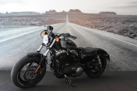 HARLEY-DAVIDSON XL 1200X FORTY EIGHT SPORTSTER 2014
